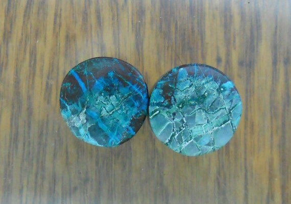 Chrysocolla Malachite ear plugs, one pair