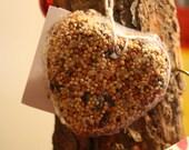 Heart Shaped Birdseed Ornament, Outdoor Enthusiast, Teachers Gift, Bird Watcher
