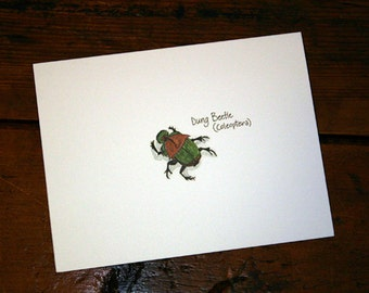 Dung Beetle Note Card