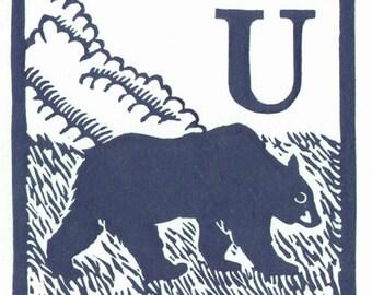U - Ursus