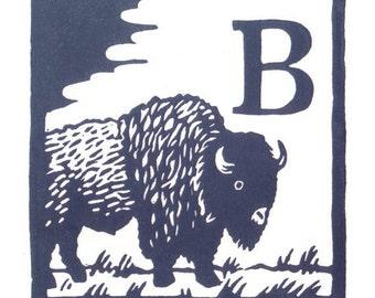 B - Bison
