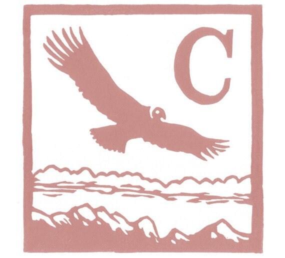 C - Condor