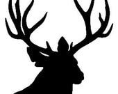 Mule Deer - wall or carl decal