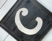 "Wood Monogram indoor/outdoor wall hanging.  20 x 20"" frame with wooden letter attached."