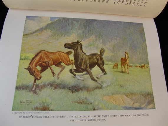 Smoky The Cow Horse by Will James - Vintage Horse Story - RESERVED ANDY