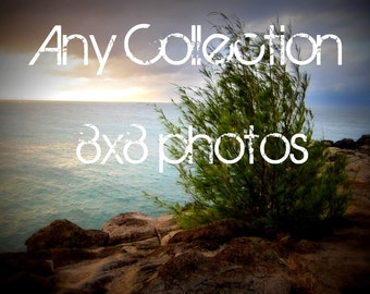 Any Collection 8x8 photo size