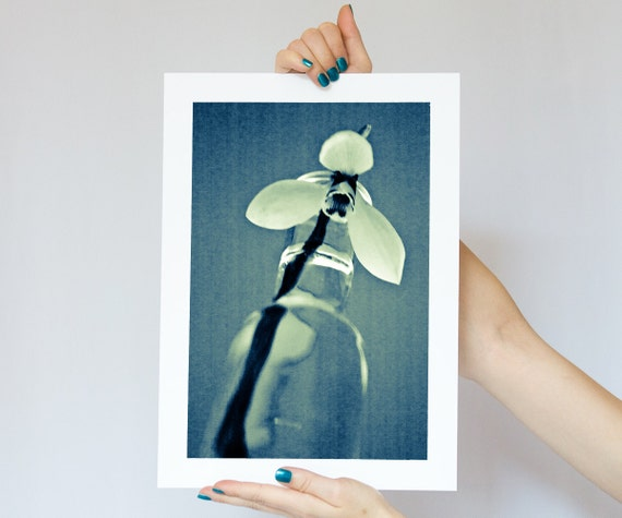 Fine Art Photography, Snowdrop Flower Photograph, Macro Photo Blue turquoise teal white glass bottle 8x12 or 8x10
