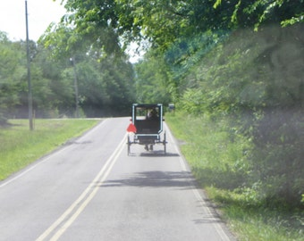 Amish Man and Buggy / Amish Picture / Amish Print / Photo Card / Free US Shipping