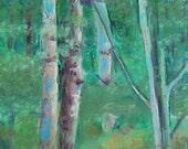Vermont Trees Pastel Landscape