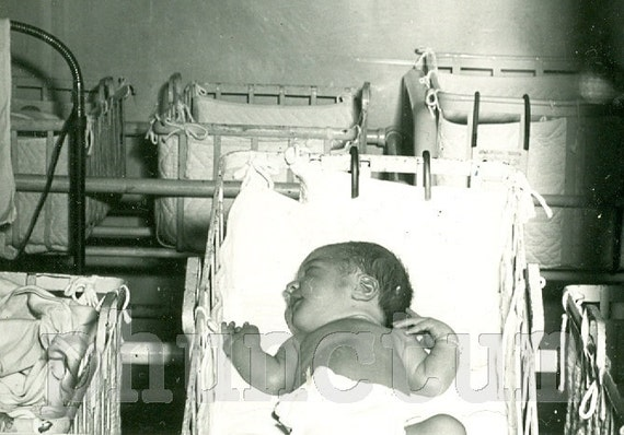 Vintage Photo: Newborn Baby in Hospital Nursery Window