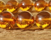 Bug Encasing Beads -  Honey/Amber Colored Beads