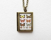 Butterfly Collection - Antique Gold Photo Book Locket Necklace by Tiffleton