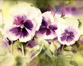 Pansies Watercolor Print - Fine Art Giclee Print - from watercolor painting by ConnieTownsArt - matted to11x14