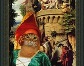 Abyssinian Cat Fine Art Canvas Print - Where is my Lady