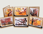 Blank Red Berry & Yellow Autumn Handmade Photo Stationary Card Set of 6