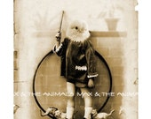 Vintage Chick Anthropomorphic Digital bird portrait Altered victorian photo Sepia tone image Download printable 4x6 5x7 and A4 size //vp008