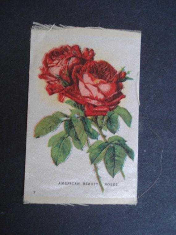 Antique Cigarette Silk  Floral - American Beaty Roses - No1