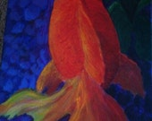 Swimming Goldfish