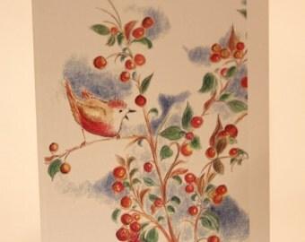 Robin-bird singing in a berry tree illustration blank Greeting card