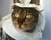 Wedding Dress Costume by FiercePetFashion
