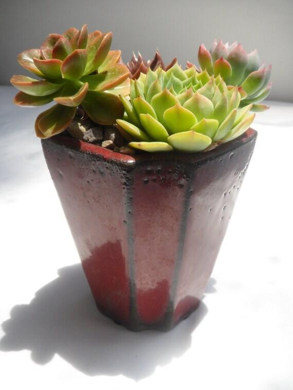 Succulent garden in beautiful red glazed planter.
