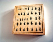 Excluvise WOOD PRINTS 10X10  Insect box