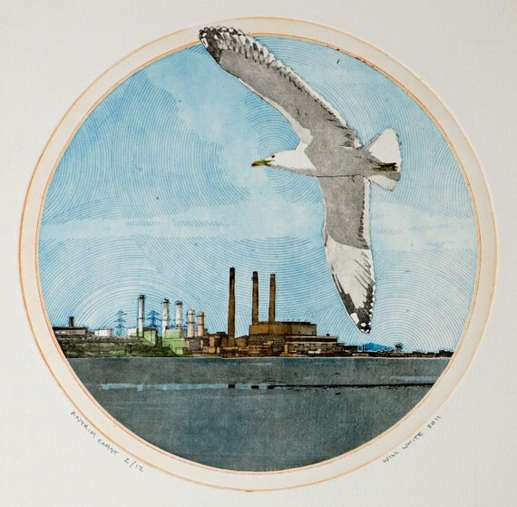 Sea Gull Etching - Original Print by William White - Antrim Coast - Color Etching Print - Hand Pulled Print - FREE SHIPPING