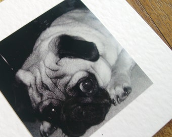 Pug card. Individually handmade black & White Pug Dog card for any occasion