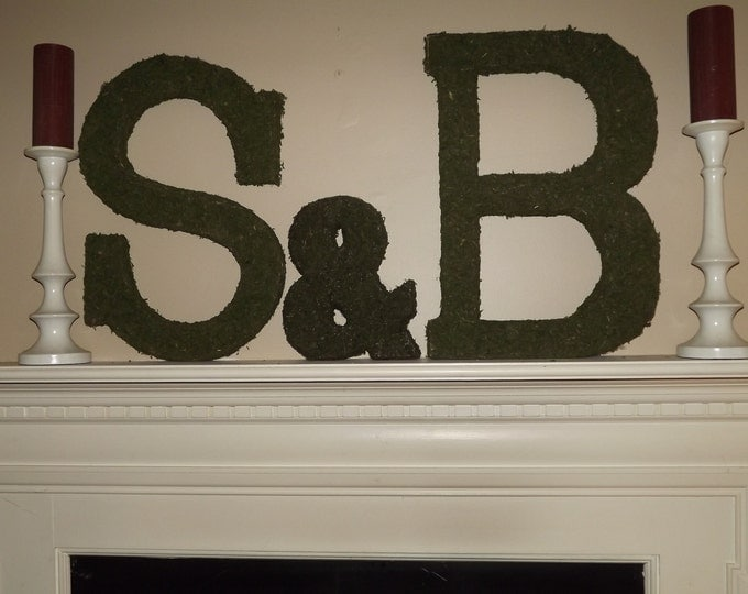 Moss Covered 24 inch Letter Set 2 Letters & Ampersand