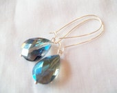 Blue Faceted Glass Kidney Wire Earrings