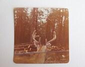 rustic vintage photo print