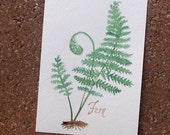 Woodland Fern 5x7 Original Botanical Watercolor- green plant nature painting, perfect for the woodsy cottage