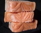 Sun Ripened Raspberry Cold Process Vegan Soap