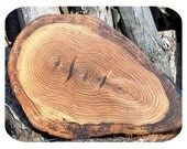 Oak Tree Cutting Board/Serving Tray  Free Shipping to USA