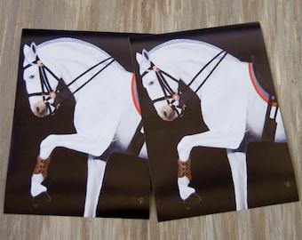 Lusitaner - Horse/Print