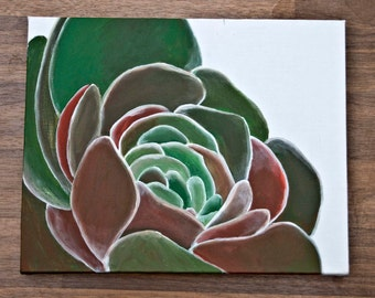 Succulent MulticolorAcrylic on canvas