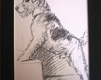 Vintage Mounted 1937 'Mac' Lucy Dawson Taffy Wire haired terrier dog plate print On the stairs Unique  gift