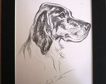 Vintage Mounted 1937 'Mac' Lucy Dawson Portrait English setter dog plate/print gift