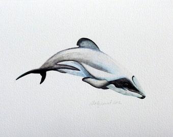 Mauis Dolphin - an Aquatic Beastie Giclee Print