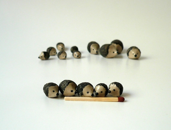 Miniature Hedgehog - Size Extra Small