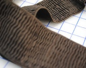 "NEW - 3"" Ripple Elastic - Brown"