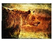 RUSTIC GRIZZLY - grizzly bear, bear, rustic, painting, wall decor, home decor, office decor
