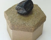 Beach Stone embellished trinket box