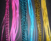 """FREE SHIPPING 6 pc Grizzly Feather Hair Extensions kit 9""""-12"""" U Choose COLORS Divine Feathers Feathe Extensions"""