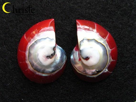 "Red Nautilus Shell Cabohon ""9"" shape pair 14x25x7mm"