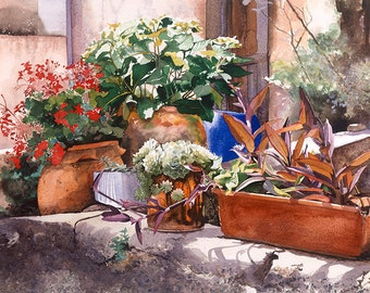 Selection of flowerpots on a wall, Watercolour Giclée print