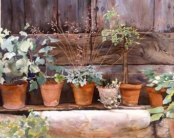 Lots of flowerpots standing on a wall, Watercolour Giclée print