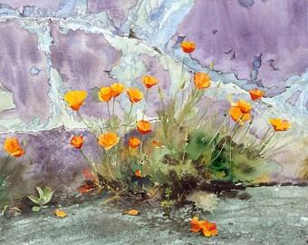 Californian poppies agaist peeling paint wall, Watercolour Giclée print