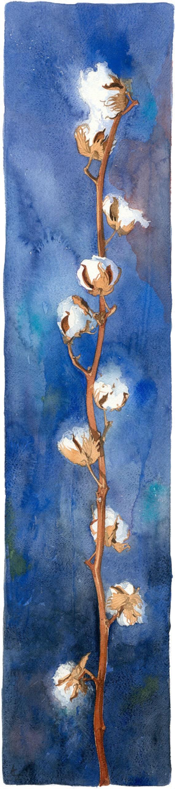 Cotton branch Watercolour Giclée print