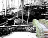 Original Photograph Trees Scene Nature 13 Mountain Rock Bridge Cliff Color and Black and White 8x10 Picture Artwork Photography Sunlight